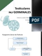 Tumores Testiculares No Germinales