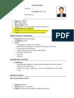Modelo Curriculum Vitae - Ingenieros HSEC - Antapaccay