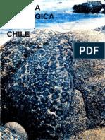 Moscoso y Mpodozis Estilos Estructurales Norte Chico