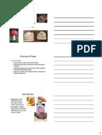 4 Fungi.pdf
