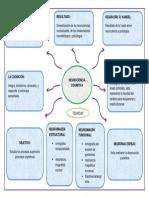 organizador visual.docx