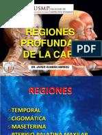 Cara Regiones Profundas 04 09 17