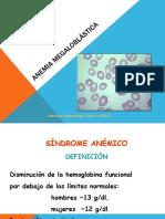 3.Anemia Megaloblastica Basica
