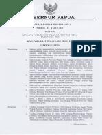 RTRW Papua.pdf