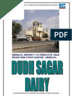 Dudhsagar DairyRreport 2009,10