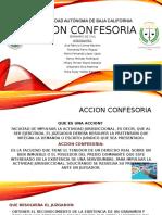 Accion Confesoria Civil (1)