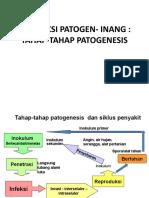 5. Patogenesis Dan Respon Tanaman