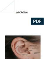 Mikrotia