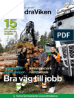 Södraviken_2017