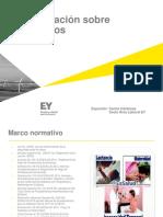 EY - subsidios.pdf