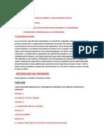 Programa de Capacitacion Vendedores Camilo 2 1
