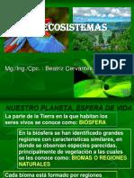 PPT_ECOSISTEMA