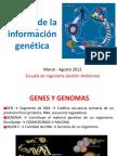 Flujo_Información_Genética
