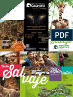 Visita-Salvaje-Parque-de-la-Naturaleza-de-Cabarceno.pdf