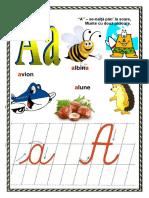 Alfabetul An