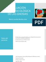 Evaluación Neuropsicológica de Las Gnosias