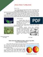 92387936-Penyakit-Tumbuhan-Akibat-Virus.doc