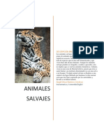 Animales Salvajes Angel r