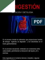 La Digestión
