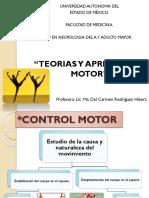 Teorias y Aprendizaje Motor.