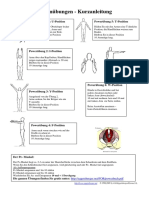 runenuebungen-kurzanleitung.pdf
