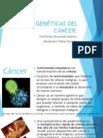 Cáncer Enfermedad Genética Oncología Primera Exposición Grupo 2