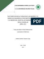Yanarico_ac Factores Socioculturales y Desarrollo Psicmotor