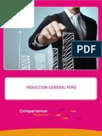 INDUCCION_GENERAL_PERU.pdf