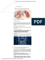 ¿Sabes como funciona el páncreas_ - Dia...tar y saludDiabetes, bienestar y salud.pdf