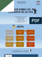 TALLER SOBRE LOS CUIDADOS DE LA VOZ p (1).pptx