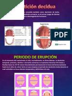 denticiondecidua-130120165441-phpapp01