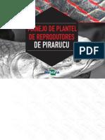 Pirarucu-reprodução,alevinagem e engorda.pdf