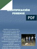 Identificación Forense