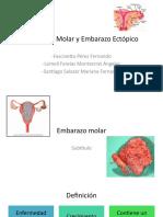 Embarazo-molar y Ectópico (Equipo7)