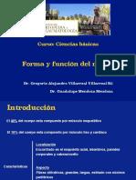 09 Forma y Funcion Del Musculo (1)