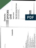 Derecho Procesal Civil-Carrasco Soule