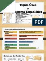 5a Anatomia Sistema Oseo