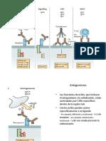 Biotecnologia Biomedica