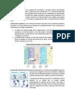 Coordenadas Manejadas en Colombia IGAC