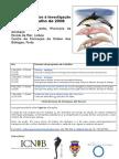 """Curso de Formação """"Cetáceos:dos Arrojamentos à Investigação"""""""