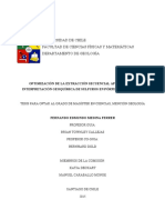 Optimizacion-de-la-extraccion-secuencial-aplicada-a-la-interpretacion.pdf