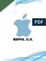 Plan de Transferencia Tecnológica Mapple, C.A. Informe