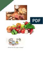 Alimentos de Origen Animal Vegetal y Mineral