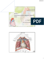 1.Anatomi KV