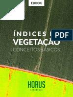 eBook Indices de Vegetação