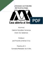 ReporteSumadorGlez (1).docx
