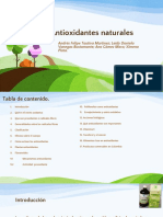 Antioxidantes Naturales Final