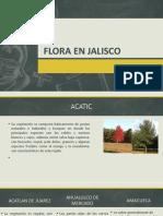 Flora en Jalisco