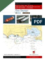 VAL_Gas_Sayago_SA_Regasificadora_y_gasoducto.pdf