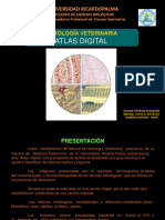 HISTO VET ATLAS DIGITAL VERSION 4.pdf